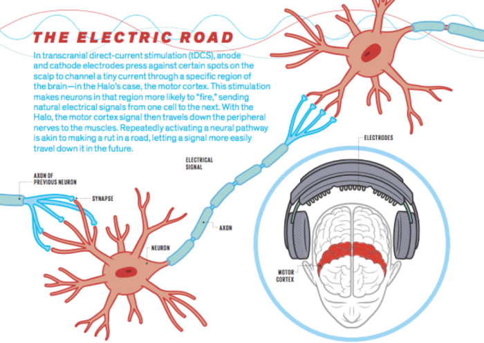 the-electric-road